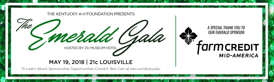 Emerald Gala Word Press Banner